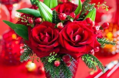 Comment choisir votre bouquet de fleurs de Noël ?