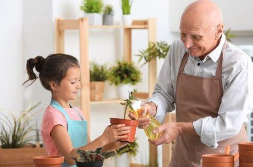 Comment faire plaisir à votre aïeul pour la Fête des grands-pères ?