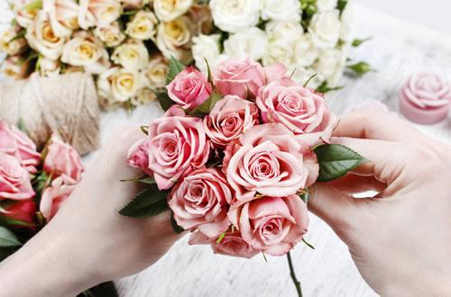 Comment converser une rose ?