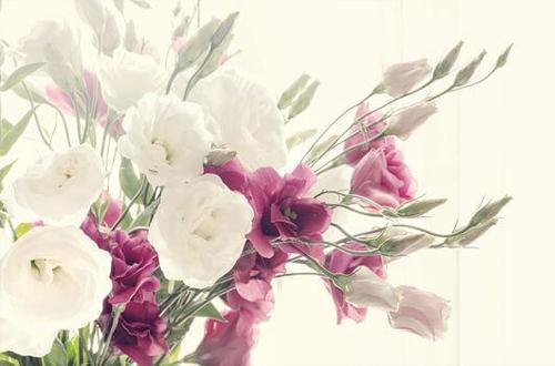 Quelles fleurs pour un mariage ? Florajet