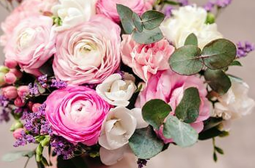 La renoncule, une fleur hivernale pour créer de magnifiques bouquets