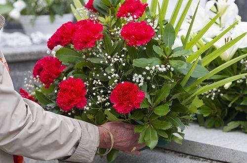 Les plantes de deuil, une symbolique à connaître