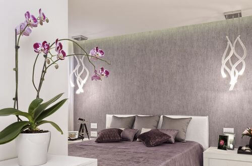 Orchidées et design, la combinaison gagnante
