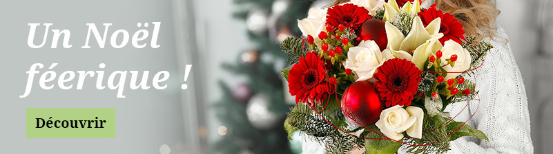Livraison de fleurs pour Noël