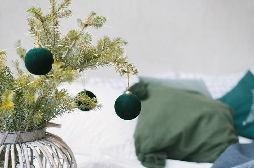 Comment bien choisir son sapin de Noël ? Conseils et astuces