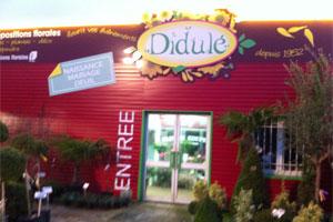 SARL DIDULE