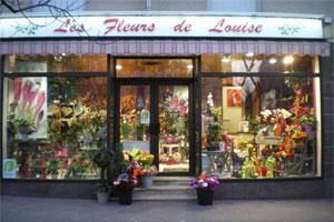 LES FLEURS DE LOUISE TRAXLER