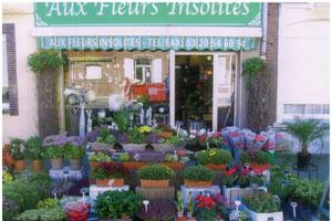 AUX FLEURS INSOLITES