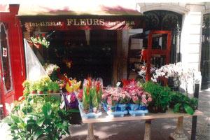 BOUET FLEURS