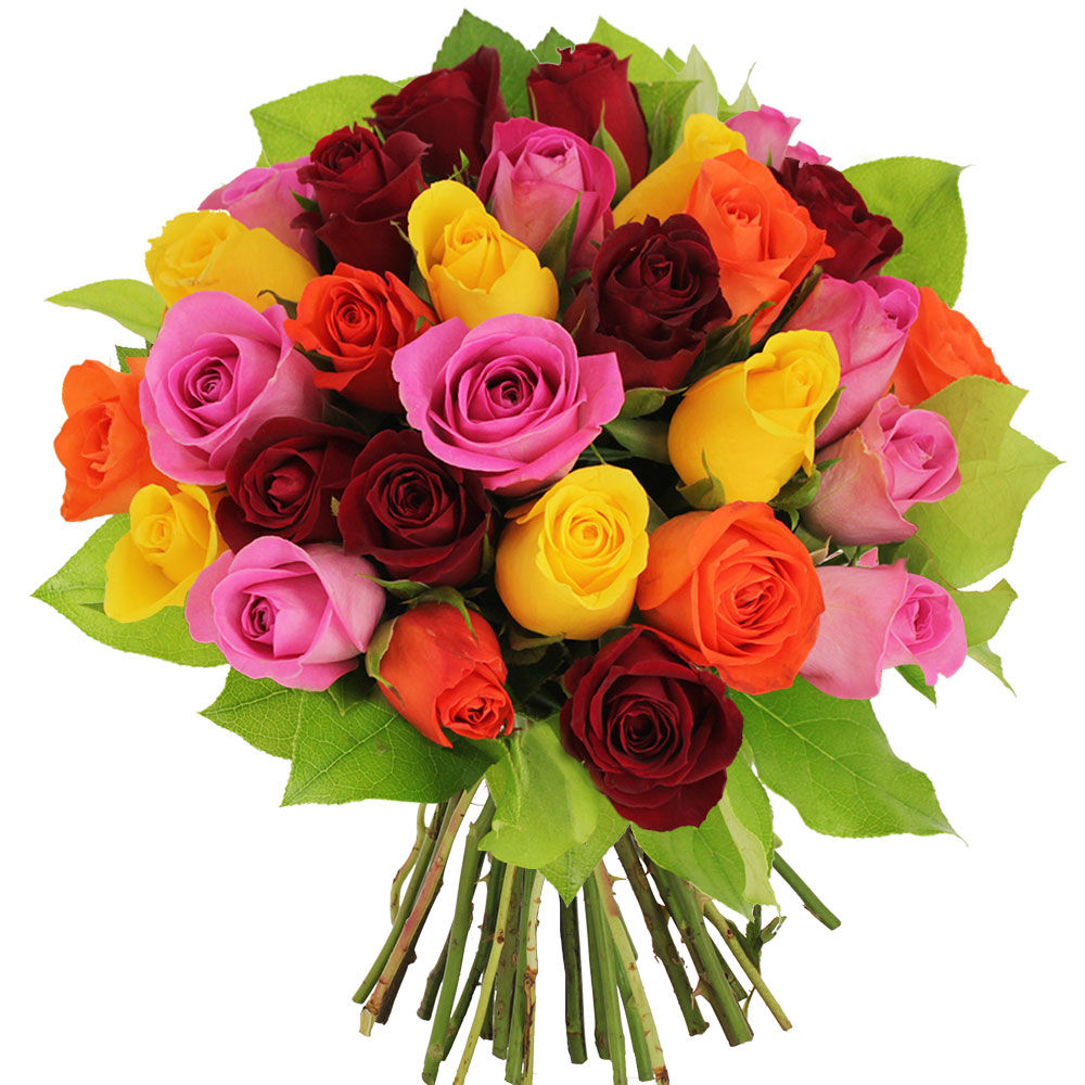 Bouquet 30 roses multicolores livraison express florajet for Bouquets de roses