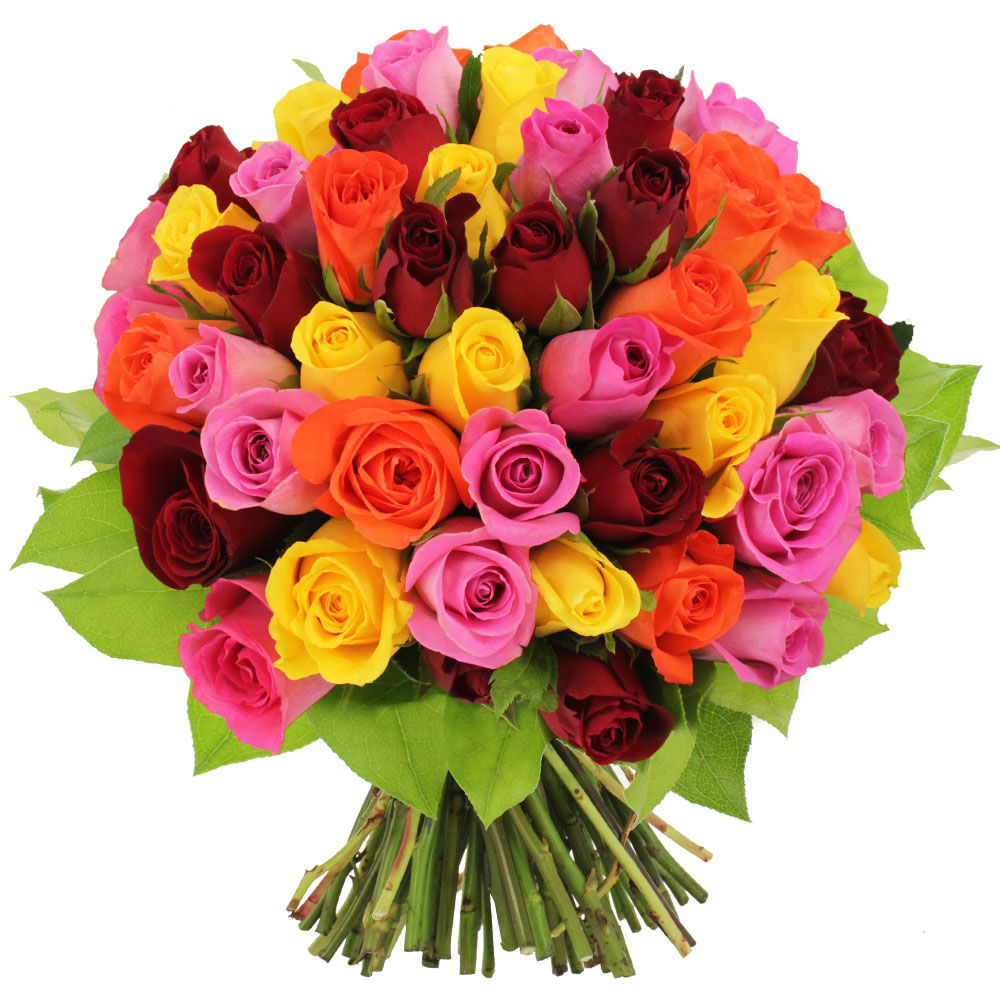 Bouquet 50 roses multicolores livraison express florajet for Bouquet de rose