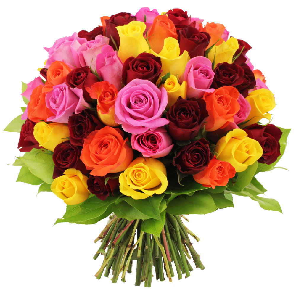 Bouquet 60 roses multicolores livraison express florajet for Bouquets de roses