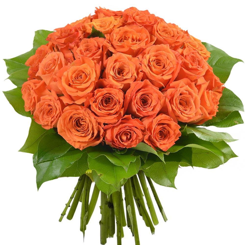bouquet de 30 roses orange livraison en express florajet. Black Bedroom Furniture Sets. Home Design Ideas