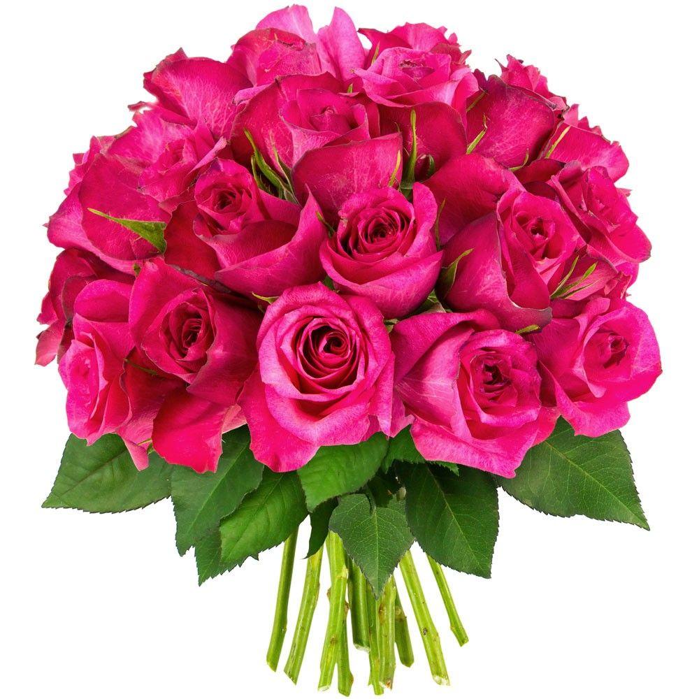 Bouquet de 30 roses fuchsias livraison express florajet for Livraison rose