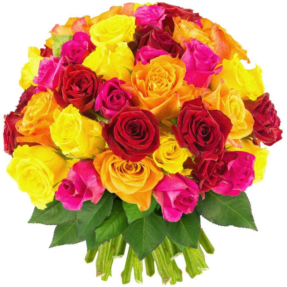 Bouquet de roses 100 roses multicolores livraison for Bouquet livraison
