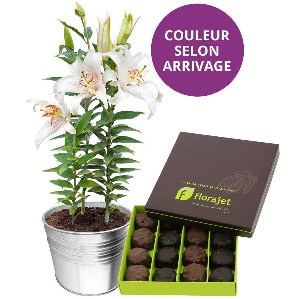 Plantes et arbustes lys en pot rochers livraison for Plantes et arbustes