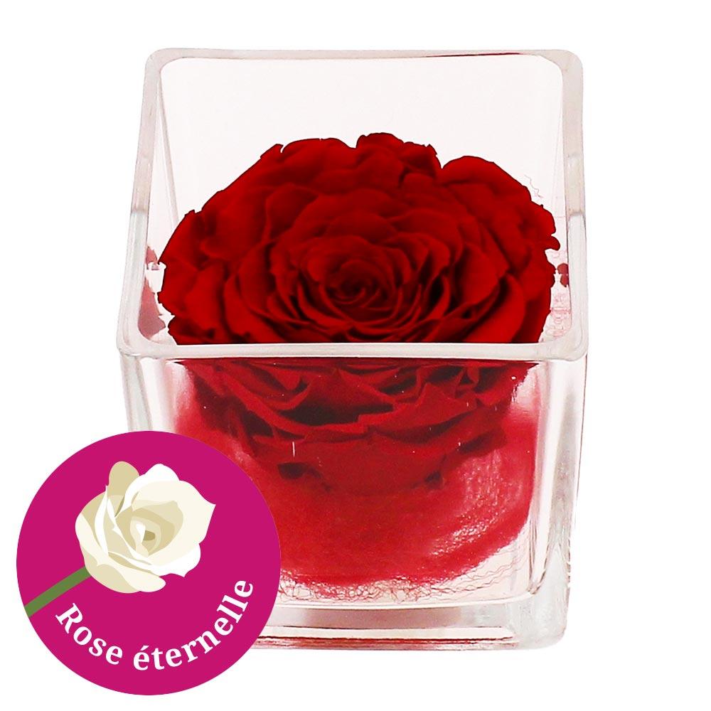 bouquet de roses rose stabilisee pot en verre carre livraison express florajet. Black Bedroom Furniture Sets. Home Design Ideas