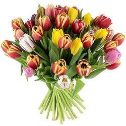 Florajet livraison de fleurs bouquets et cadeaux d s 22 for Bouquet de tulipes