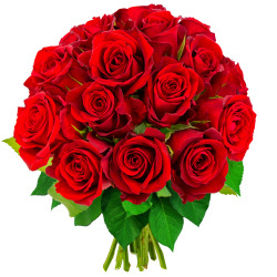 15 ROSES ROUGES - 1