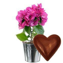 cadeaux gourmands bougainvillier coeur en chocolat livraison express florajet. Black Bedroom Furniture Sets. Home Design Ideas