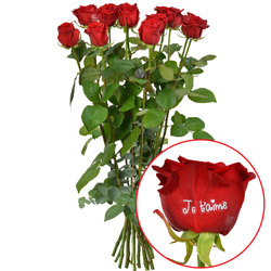 11 + 1 ROSE MARQUEE JE T'AIME