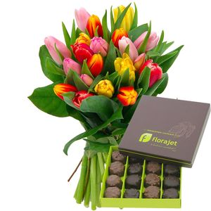20 TULIPES + CHOCOLATS