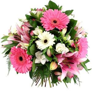Fleurs, Éclat, Ornement, Flowers, Tubes, Bouquets, - Wall Iris - Free  Transparent PNG Clipart Images Download