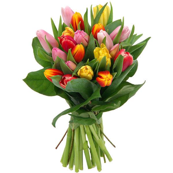 Bouquet rond 20 TULIPES