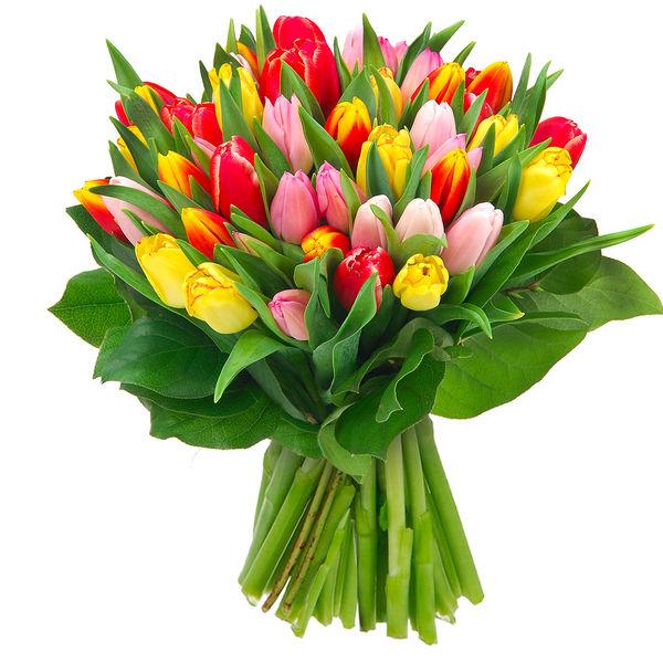 Bouquet rond 40 TULIPES