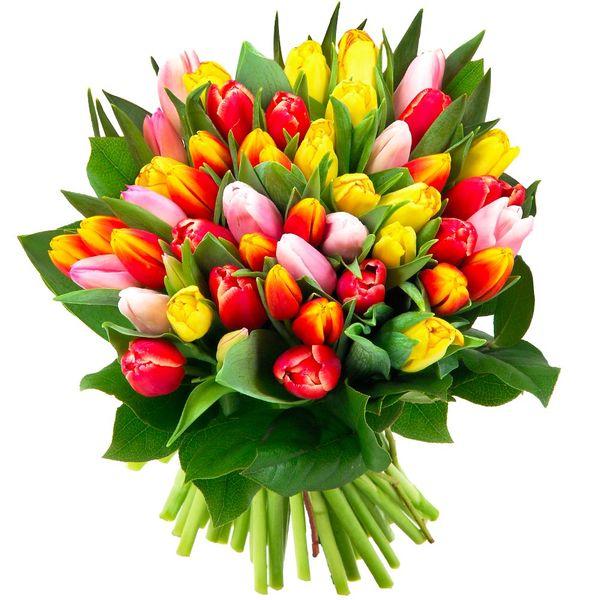 Bouquet rond 50 TULIPES