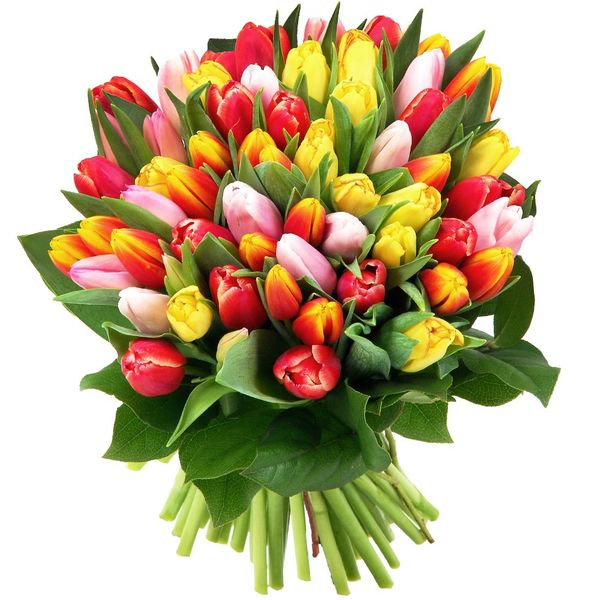 Bouquet rond 60 TULIPES