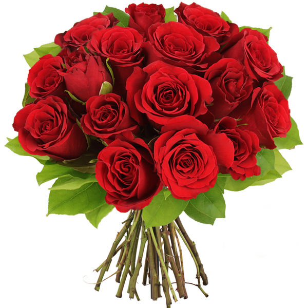 Bouquet de roses BOUQUET DE 15 ROSES ROUGES