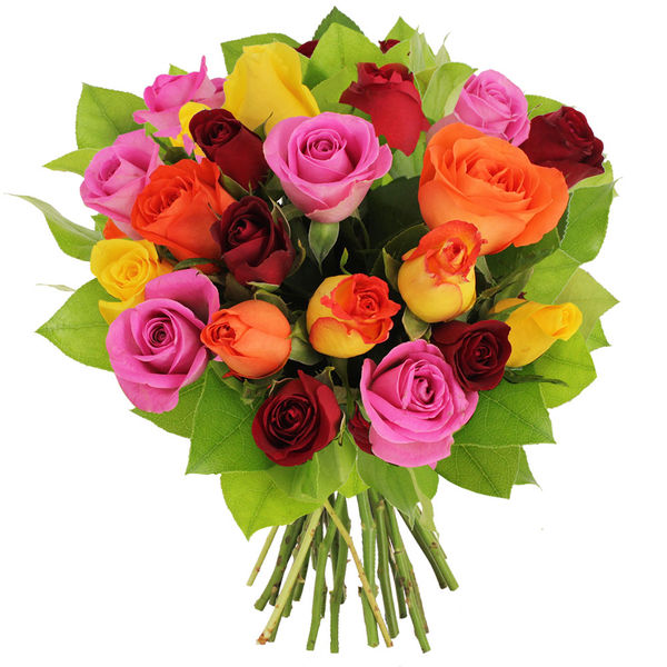 Bouquet de roses 20 ROSES MULTICOLORES