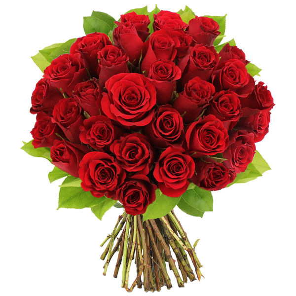Bouquet de roses BOUQUET DE 30 ROSES ROUGES