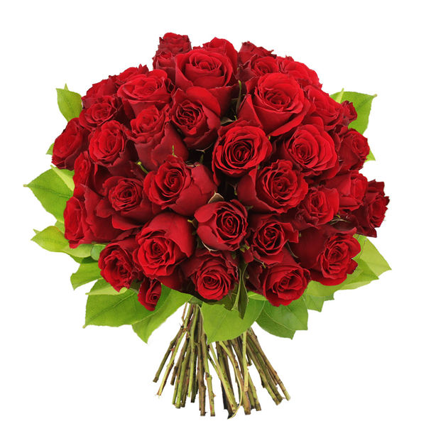 Bouquet de roses BOUQUET DE 40 ROSES ROUGES