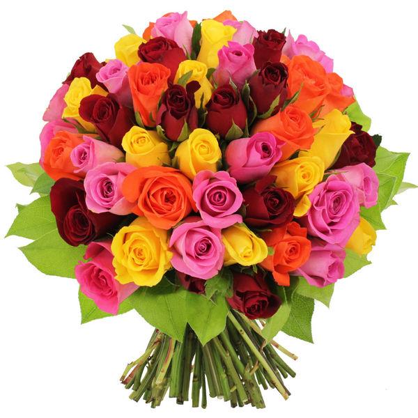 Bouquet de roses BOUQUET DE 50 ROSES MULTICOLORES