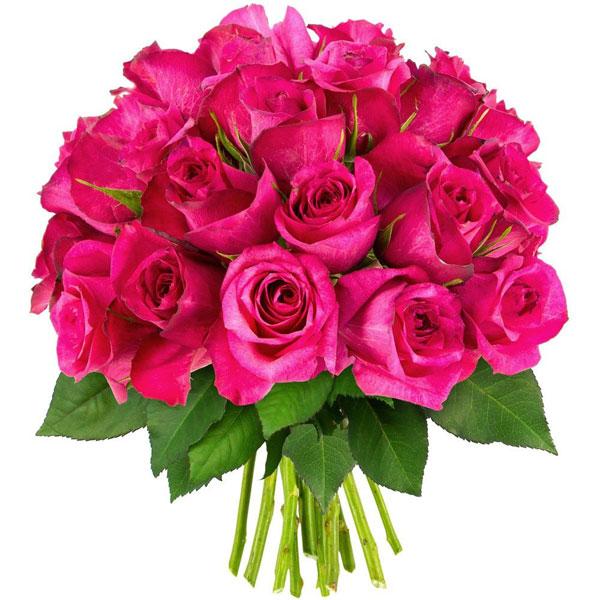 Bouquet de roses 30 ROSES FUCHSIAS