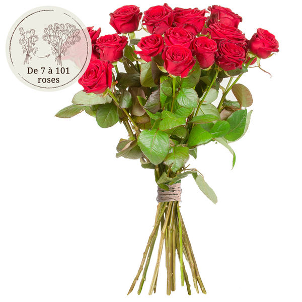 Bouquet de roses 19 GRANDES ROSES ROUGES