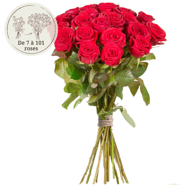 Bouquet de roses 35 GRANDES ROSES ROUGES