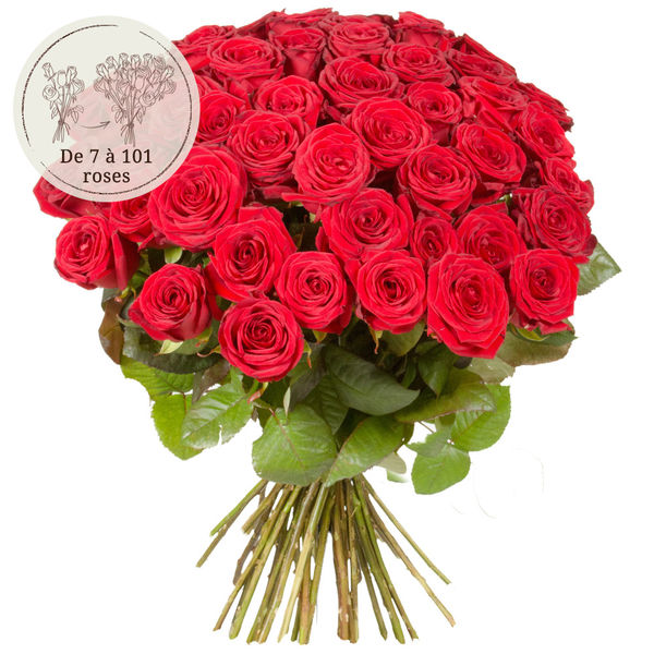 Bouquet de roses 51 GRANDES ROSES ROUGES
