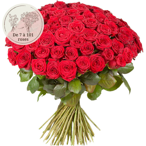 Bouquet de roses 76 GRANDES ROSES ROUGES