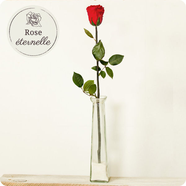 Bouquet de roses ROSE ETERNELLE 70CM + SOLIFLOR