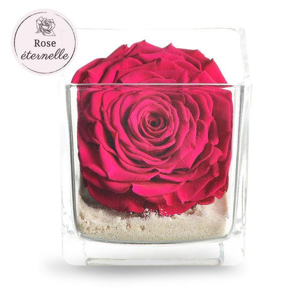 Bouquet de roses ROSE ETERNELLE FUCHSIA+ POT EN VERRE CARRE
