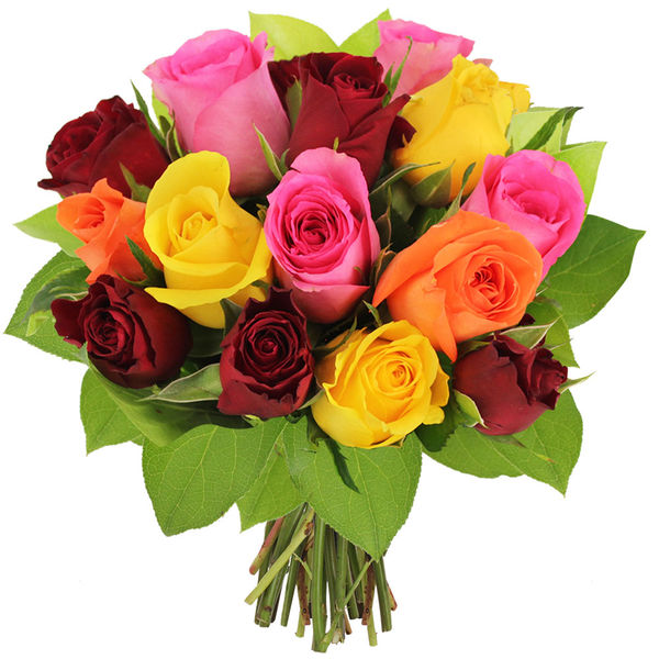 Bouquet de roses 15 ROSES MULTICOLORES