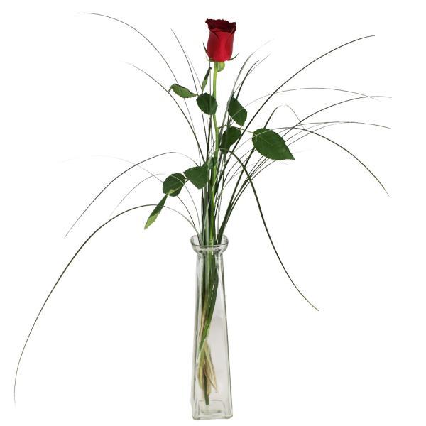 Bouquet de roses 1 ROSE ROUGE + SOLIFLORE + FEUILLAGE