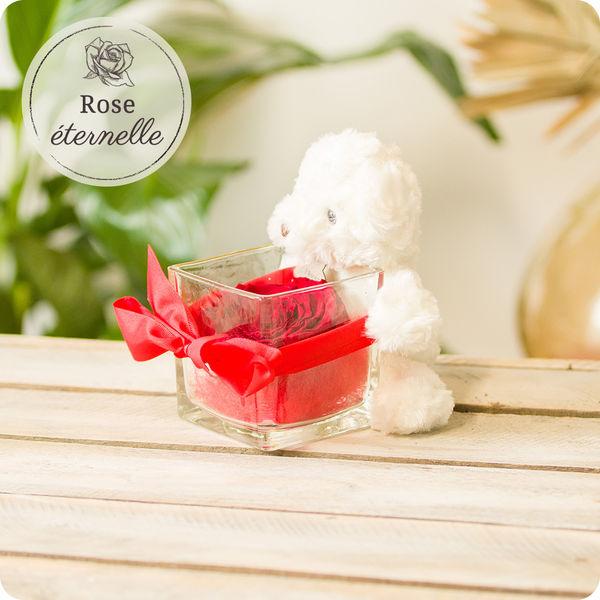 Les Roses OURSON + ROSE ETERNELLE ROUGE + VERRINE CARREE