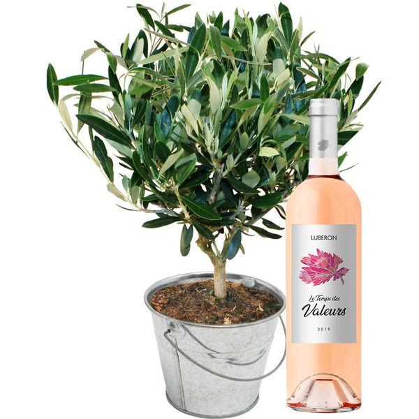 Cadeaux insolites OLIVIER + VIN ROSE DU LUBERON
