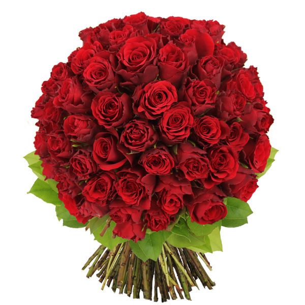 Bouquet de roses BOUQUET DE 70 ROSES ROUGES