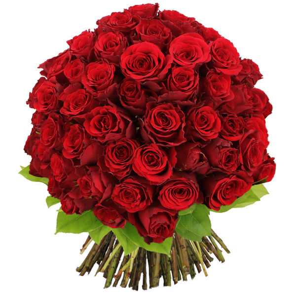 Bouquet de roses BOUQUET DE 100 ROSES ROUGES
