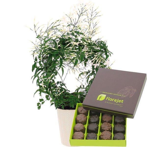 Cadeaux Gourmands JASMIN BLANC + ROCHERS AU PRALINE